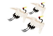 3羽の和風丹頂鶴-白背景