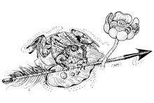 The Frog Princess. Amphibian Sits On A Water Lily Leaf And Holds An Arrow. Russian Fairytale. T Shirt Print, Tattoo Design In Dotwork Style.