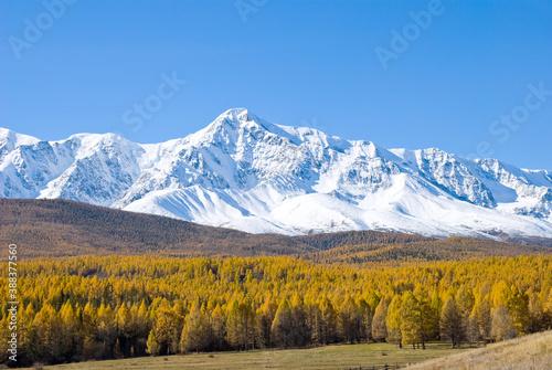 Tela Altai, view of the North Chui ridge