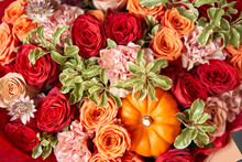 Red And Orange Flowers With Pu...