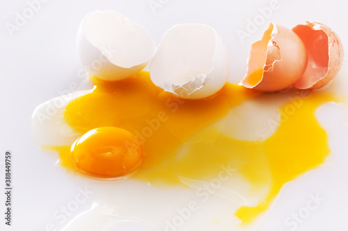 bright beautiful yolk and egg shell Canvas