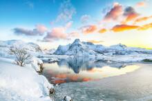 Fantastic Frozen Flakstadpolle...