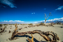 Death Valley National Park, Ca...