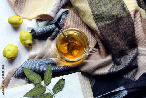 A Cup of tea with a book and quince fruit on a checkered scarf, top view - the concept of a cozy tea party in autumn days