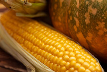Pumpkins And Ear Of Corn Close Up