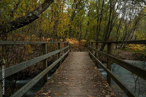 Puente cruzando un rio
