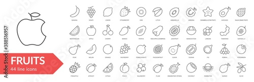 Fototapeta Fruits line icon set. Isolated signs on white background. Vector illustration. Collection obraz