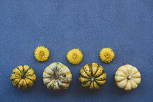 Colorful Mini Pumpkins Of Different Colors On Blue Gray Concrete Background.