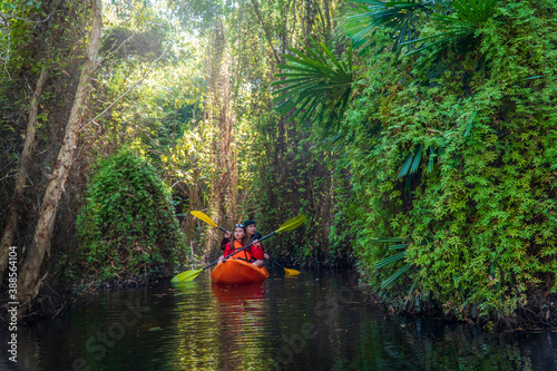 Fotografía Asian tourists, women and men canoe or kayak in mangrove forests
