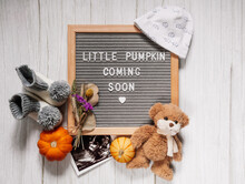 Little Pumpkin Coming Soon Sign. Baby Announcement Sign. Coming Soon Concept.  Autumn Pregnancy.
