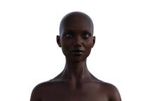 3d Model Portrait Of A Bald Wo...