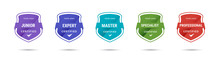 Certified Badge Logo Design For Company Training Badge. Certificates To Determine Based On Criteria. Standard Verified Colorful Modern Vector Illustration.
