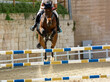 brown horse jumping the obstacle durign a five star competition in Italy