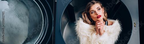 Fotografie, Obraz trendy woman in white faux fur jacket sitting in public washing machine, banner