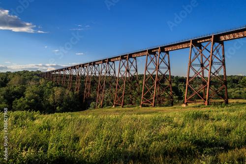 Obraz na plátně Train trestle passing over a field