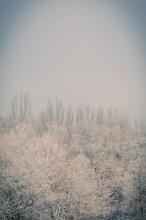 Winter Urban Frosty Landscape ...