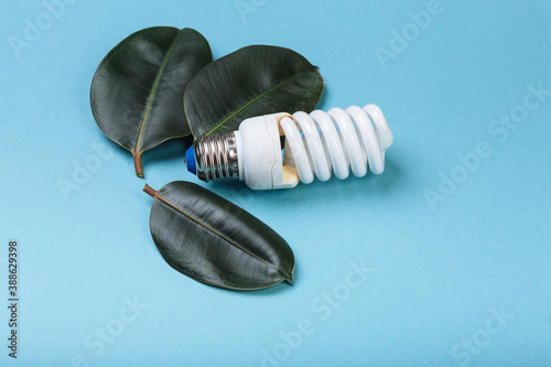 Energy-saving fluorescent lamp with green leaf, ECO energy concept Wallpaper Mural