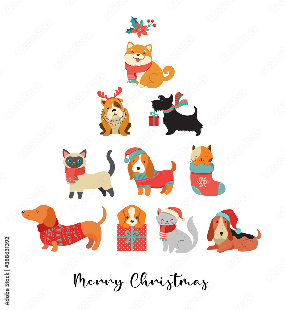 Fototapeta Collection of Christmas cats and dogs, Merry Christmas illustrations of cute pets with accessories like a knitted hats, sweaters, scarfs