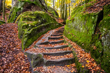 Sandstone Staircase In Autumnal Forest