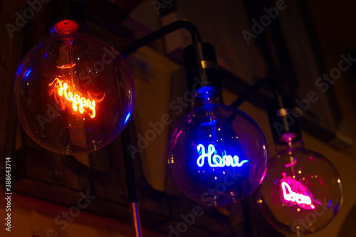 Fotografie, Obraz Neon retro style Edison light bulbs with happy, home, dreams words inside