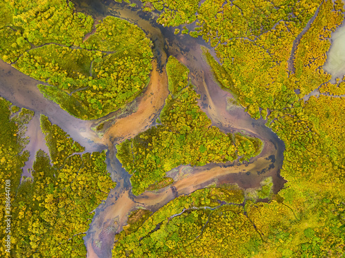 Fotografie, Obraz Aerial view of colorful pond in the marshlands during a summer day