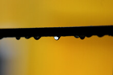 Drops Of Water || Background Yellow