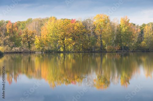Fototapety, obrazy: Nature rural pond water in autumn landscape Beautiful lake in the background of colorful forest. Romantic place for holidays. Romantic reflection.