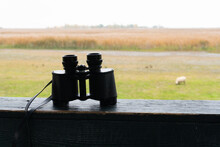 Binoculars Of A Hunter On A Shooting Range. Free Nature And Animal In The Wildnerness.