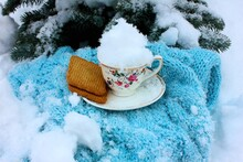 Snow In A Mug, Cookies, Knitted Blue Plaid Scarf And A Christmas Tree Outdoors.