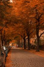 Una Calle De Halle Cuando El O...