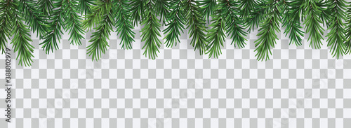 Obraz Vector decorative seamless christmas pattern or frame with green coniferous branches - fototapety do salonu