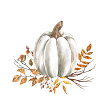 Watercolor Fall Pumpkin Arrangement, Beautiful Autumn Decoration, Isolated On White Background. Watercolor White Pumpkin With Yellow And Orange Dry Leaves And Tree Branches.
