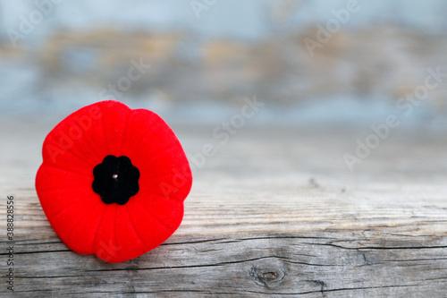 Le coquelicot pour le Jour Du Souvenir de La Première Guerre Mondiale Canvas