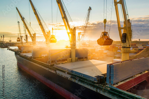 Large international transportation vessel in the port, loading grain during sunrise for export in the sea waters Wallpaper Mural
