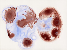 Blue And Brown Bacterias Resembling Drawing