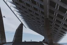 Solar Panels Standing Among City Streets Near Coast Of Sea.