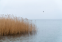 Lake Ohrid, Northern Macedonia