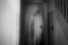 A Ghostly, Blurred, Hooded Fig...
