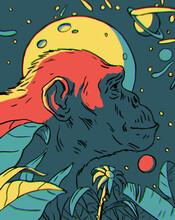 Monkey Ancestor Ape Illustrati...
