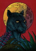 Black Panther With Moon And Plants Illustration