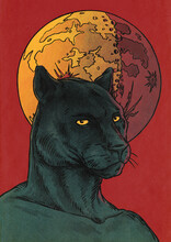 Black Panther And Moon Illustration