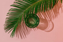 Studio Shot Of Palm Leaves And...