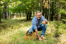 Mature Man Collecting Mushroom...
