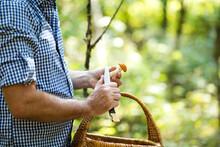 Close-up Of Man Holding Mushro...
