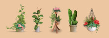 Set Of Vector Realistic Detailed House Or Office Plant For Interior Design And Decoration.Tropical And Mediterranean Ornamental Plant For Interior Decor Of Home Or Office