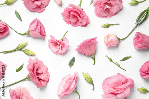 Foto Beautiful pink Eustoma flowers on white background, flat lay
