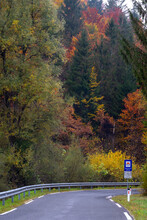 Driving On A Curvy Mountain Road Through A Beautiful Forrest In Autumn Displaying Colorful Foliage After A Rainy Day. Traveling On A Road Trip Through A Beautiful Landscape With Bright Colors.