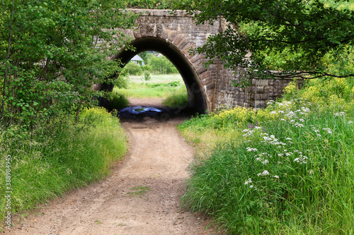 stone arch passage tunnel in green thickets Fotobehang