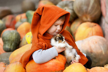 A Small/ Little Child Girl In An Orange Raincoat / Poncho With A Gnome Long Hood On A Pile / Slide Of Colorful Pumpkins With A Small Kitten. Bright Autumn Picture, Harvest, Thanksgiving