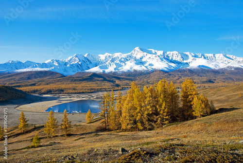 Fotografia Golden autumn in Altai, view of Lake Dzhangyskol and the North-Chuya ridge